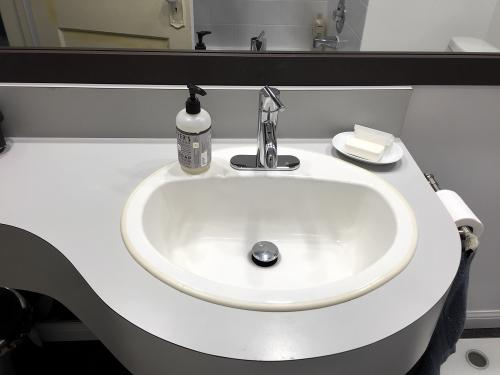 This is actually the existing sink, cleaned up with a new single lever Pfister Fullerton faucet
